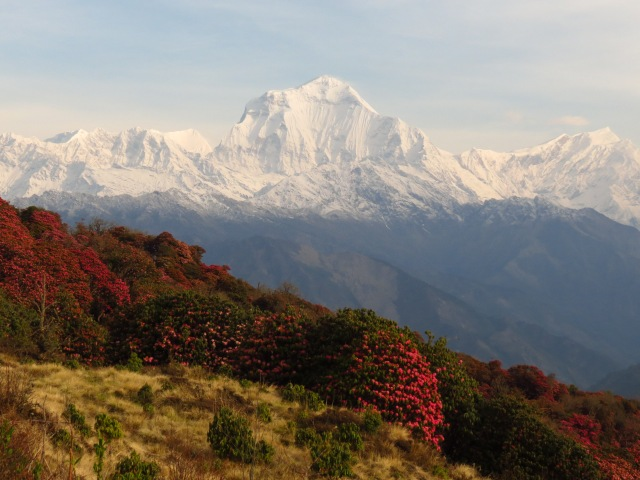 one of the mountains in the Annapurna range
